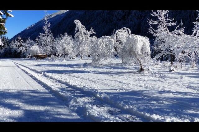 Winter Wonderland – Cover gesungen von Annett und Thea
